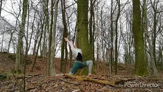 Yogaflow im Zauberwald