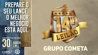 LOTE TRIPLO TOUROS NELORE GRUPO COMETA