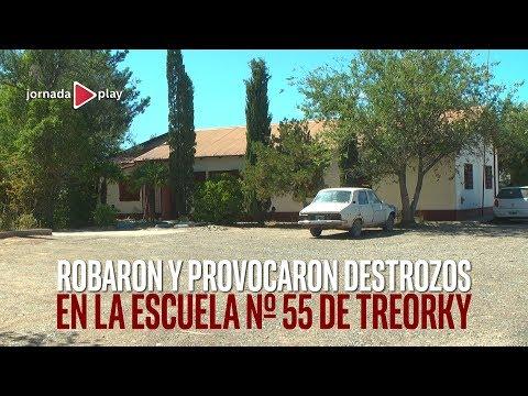 Robo en la Escuela 55 de Treorky