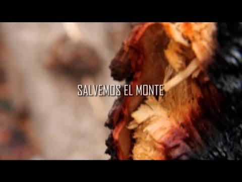 Salvemos el monte [Redrum Films]