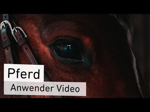 Anwender Video Pferd | CharLine Futterkohle