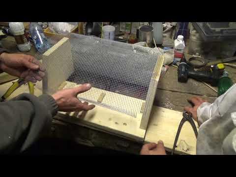 """Frelon asiatique - Fabrication de la """"muselière-piège"""" ou """"piège à bec"""""""