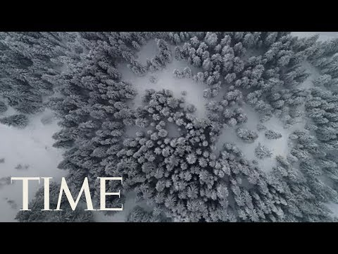 The Winter Solstice Is Next Week, Here Are 4 Things You Probably Didn't Know | TIME