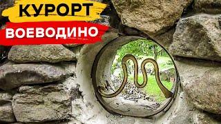 Курорт Воеводино - парк графа Шенборна (Закарпатская область)