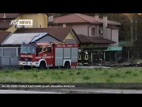 04/10/2019   VUOLE CACCIARE LE API, INCENDIA RIMESSA