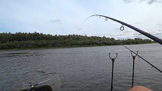 Лучшее время для ловли рыбы на реке