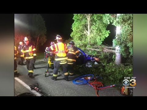 Driver Crashes Into Large Tree In Downingtown