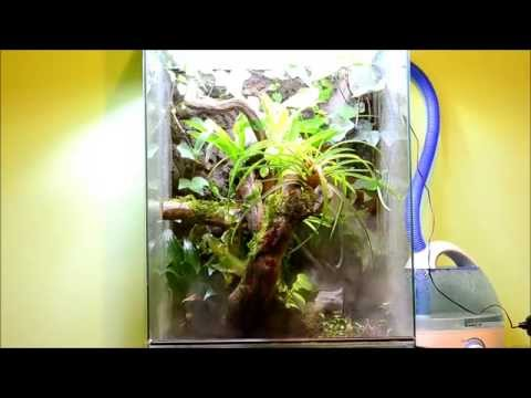 Rainforest vertical terrarium - fogger