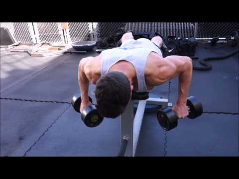 Dumbbell Lying Rear Delt Row