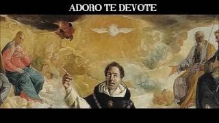 1 hora de lindos Cantos Gregorianos Católicos | 1 hour of beautiful catholic gregorian chants