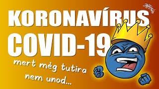 Koronavírus (COVID-19) összefoglaló 2020.02.21. (FIGYELEM! EGYES RÉSZEI MÁR ELAVULTAK!