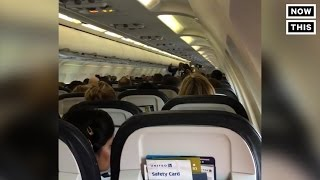 Pilot Says No Talking Politics After Heated Discussion On Plane   NowThis