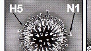 Virus - Bande annonce - VIRUS