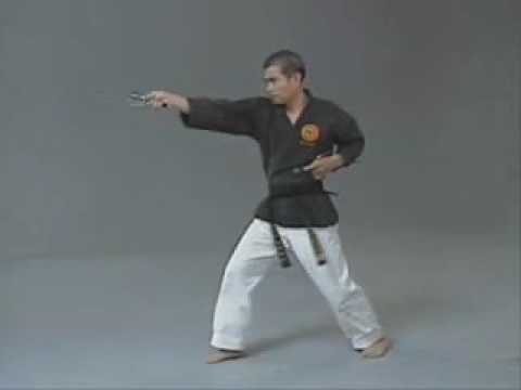 San Cho Zai   Kata with 3 Sais
