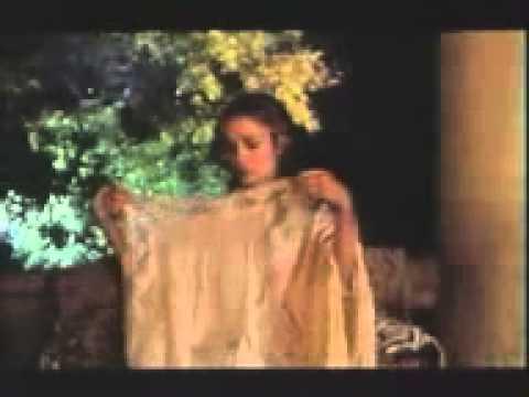 Vidéo de Georges Bardawil