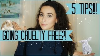How To Go Cruelty Free🐰5 Tips