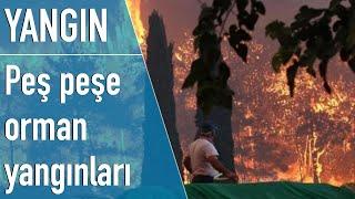 В Турции тушат пожары в шести регионах (видео)