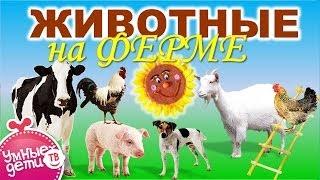 Развивающие мультфильмы для детей. Животные для детей - ФЕРМА. Развивающее видео для детей