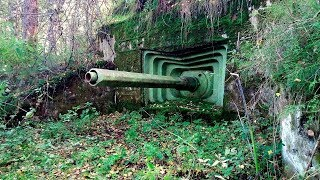 12 Most Strangest Finds In The Forest