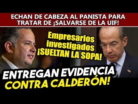 Empresarios sueltan la sopa! Entregan pruebas contra Calderón para quedar bien con Santiago Nieto