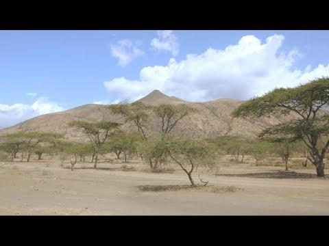 ECOBOMA - GCCA+ project, Arusha Tanzania