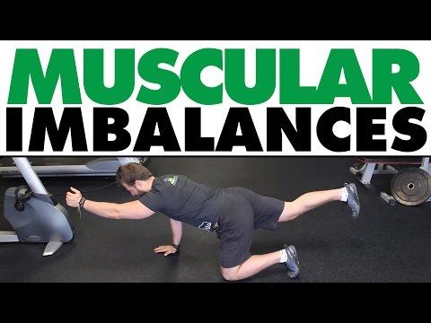 Lensemble des exercices domestiques pour lintensification des muscles