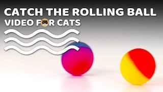CAT GAMES - Catch the Rolling Ball! Video for Cats & Dogs to Watch.