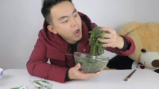 """试吃植物中的鱼子酱""""海葡萄"""",脆脆的声音,听着就觉得很好吃"""