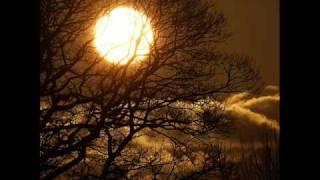 Velvett Fogg -  Once Among the Trees (1969) Psychedelic Rock