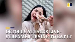 YouTube video E-card Subscribe to our YouTube channel for free here  A livestreamer was attacked by an octopus as