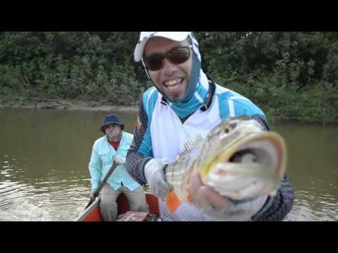 Tucunare rio Vita, Puerto Carreño, vichada, Colombia 2016, Fly Fishing