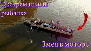 Мы так увлеклись рыбалкой что не заметили