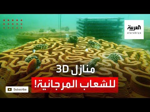 العرب اليوم - شاهد: التقنية تبني منازل مستدامة للشعاب المرجانية المهددة بالانقراض