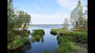 Что ловят на озере волоярви