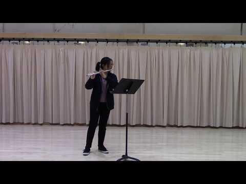 Mozart Concert in G major, movement I
