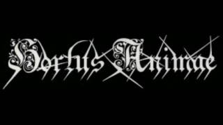 Hortus Animae - Freezing Moon (Mayhem)