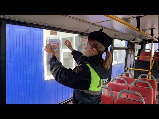 Безопасность пешеходов – дело рук самих пешеходов