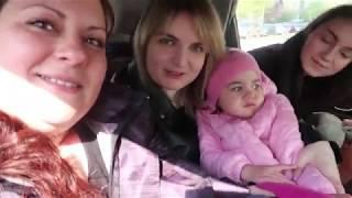 VLOG Реакция  Кости и Алисы на енота
