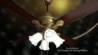 Havells Florence Underlight Fan   Premium underlight fan