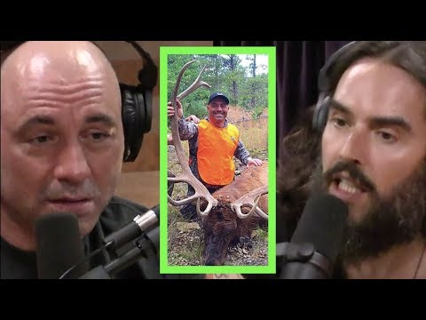 Joe Rogan and Russell Brand having a rational, honest argument about hunting