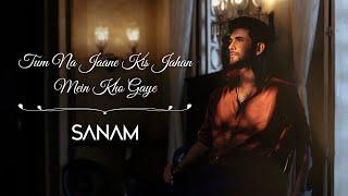Tum Na Jaane Kis Jahan Mein Kho Gaye | Sanam