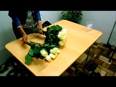 Как самостоятельно собрать букет из роз.