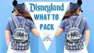 What To Pack For Disneyland // Disneyland 2018