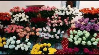 Мы едем в Бузовны  Обзор цветочного и продуктового магазина
