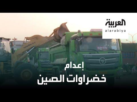 العرب اليوم - شاهد: الصين تعدم 15 ألف طن من الخضراوات والفاكهة