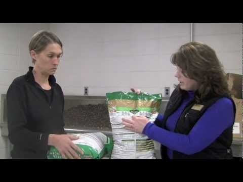 Purchasing Fertilizer for Your Lawn