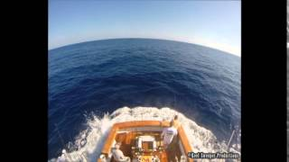 preview picture of video 'Matarese Fishing - Jaco, Costa Rica 2014 - 2 days, 36 sailfish'