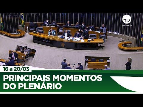 Coronavírus: Câmara aprova decreto de calamidade pública