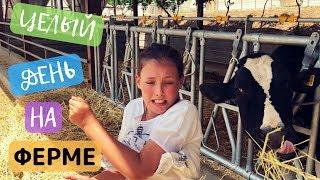 КИПР VLOG: Целый день на ферме | Кормим животных | Бег с препятствиями