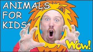 Animals for Kids and Mr. Sun NEW Story from Steve and Maggie for Children   Wow English TV